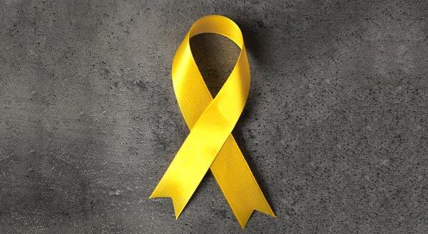 Setembro amarelo e o projeto cores