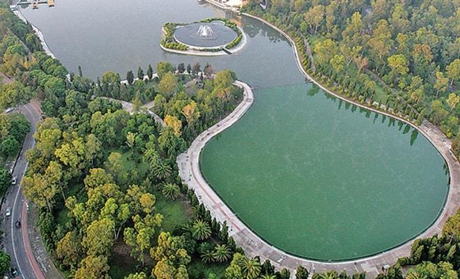 Bosque de Chapultepec, é exemplo de economia circular