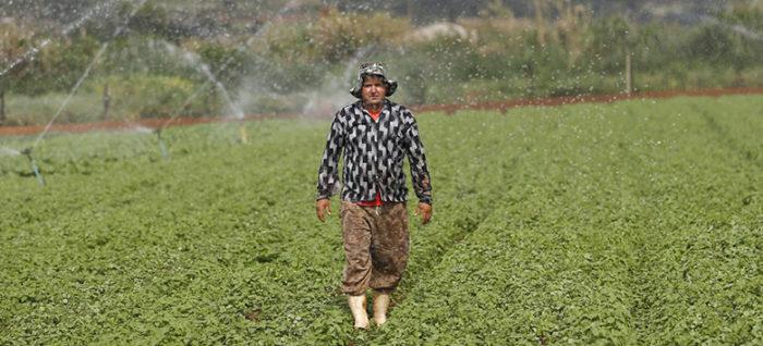 Uso de água na agricultura